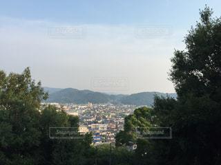 神社からの眺めの写真・画像素材[800213]