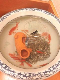 金魚鉢の写真・画像素材[1632487]