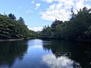 木々 に囲まれた水の体の写真・画像素材[1632517]