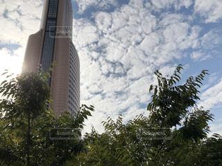 背の高い建物の表示の写真・画像素材[800233]