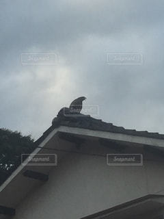 建物の屋根の写真・画像素材[801143]