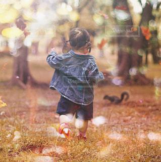 草の中に立っている小さな女の子 - No.914243