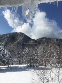 空と雪とつららの写真・画像素材[801045]