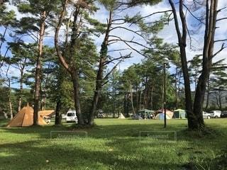 キャンプ場の写真・画像素材[2733120]