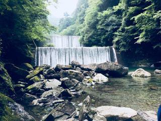 森の中の大きな滝の写真・画像素材[802379]