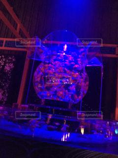 アクアリウムの写真・画像素材[802744]