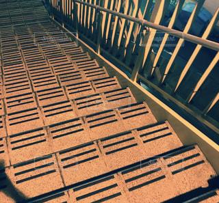 階段の写真・画像素材[806362]
