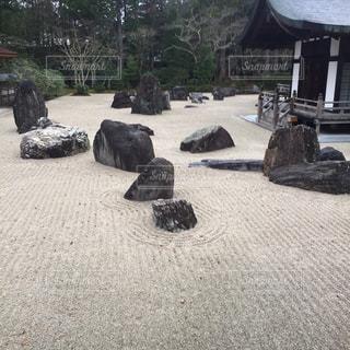 砂の上に牛の像の写真・画像素材[802971]