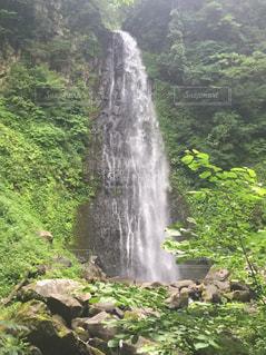 森の中の大きな滝の写真・画像素材[802994]