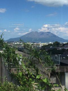 背景の山と木の写真・画像素材[803499]