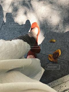 秋色の足元🐾の写真・画像素材[803623]