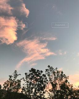 桃色の空の写真・画像素材[804961]
