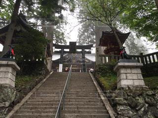 秩父 三峯神社の写真・画像素材[806050]