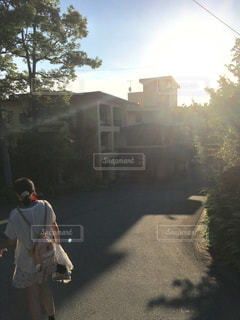 秩父の朝の写真・画像素材[804469]
