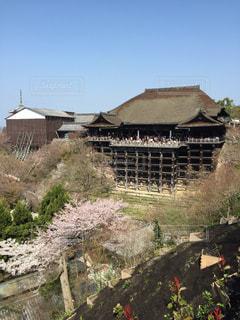清水寺の写真・画像素材[804497]