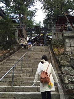 神社の階段を上がるの写真・画像素材[804499]