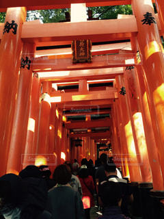 京都の沢山の鳥居の神社の写真・画像素材[804509]