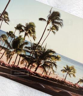 ハワイの思い出の写真・画像素材[2092197]