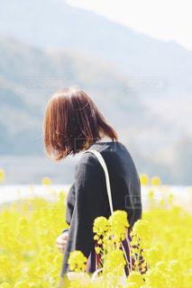春の写真・画像素材[377418]
