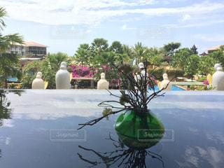 テーブルの上の花の花瓶の写真・画像素材[806568]