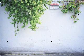 道路脇の標識の写真・画像素材[2125170]