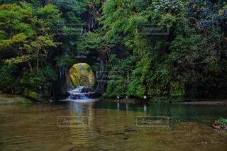 濃溝の滝の写真・画像素材[807857]