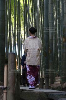 着物の女性の写真・画像素材[808293]
