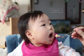 離乳食大好き!の写真・画像素材[808054]