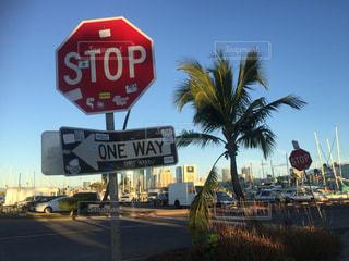 ヤシの木の前で一時停止の標識 - No.810794