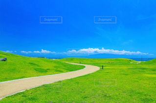 近くに緑豊かな緑のフィールド - No.809588