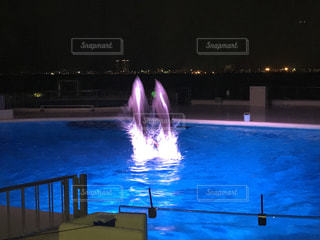 夜のイルカショーの写真・画像素材[809325]