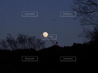 月に届きそうなの写真・画像素材[809229]