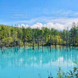 自然の写真・画像素材[2065186]
