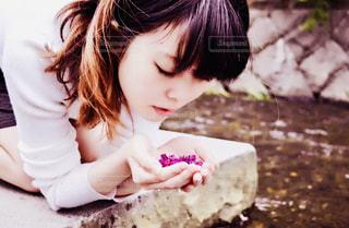 花の写真・画像素材[2402074]