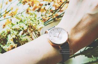 腕時計の写真・画像素材[858667]