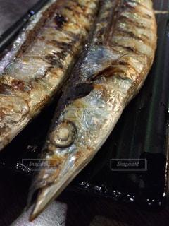 秋刀魚塩焼きの写真・画像素材[810161]
