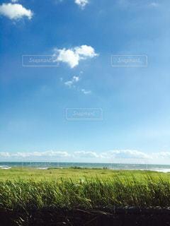 綺麗な海と大規模なグリーン フィールドの写真・画像素材[811998]