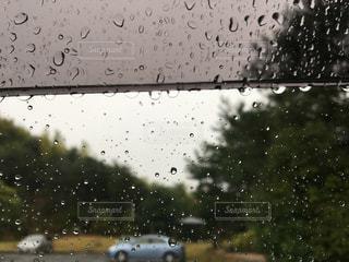 雨の写真・画像素材[821171]