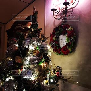 クリスマス ツリーの写真・画像素材[812859]