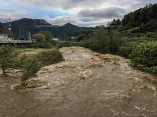 台風で増水した川の写真・画像素材[822774]
