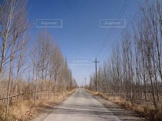 中国北部、砂漠への道の写真・画像素材[812833]