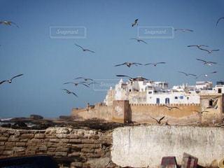モロッコの港町の写真・画像素材[812879]