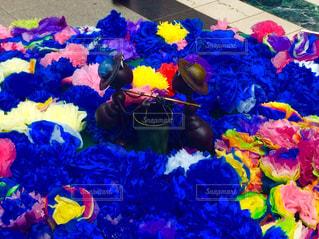 花とあり - No.814025
