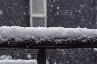 久しぶりの雪 - No.1010341