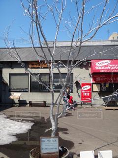 道の端にサイン - No.814584