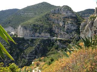 近くに緑豊かな緑の丘陵のアップの写真・画像素材[815388]