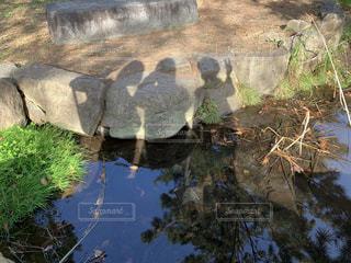 水にうつる影の写真・画像素材[1636444]