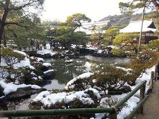 雪の日の銀閣寺の庭園の写真・画像素材[816933]