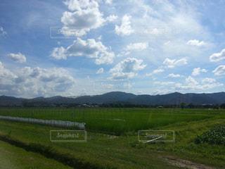 大空の下に広がる農場の写真・画像素材[817593]