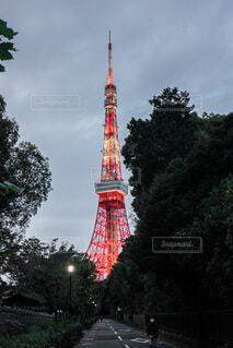 東京タワーの写真・画像素材[3812244]